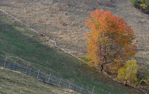 2012-10-25 15 Magura
