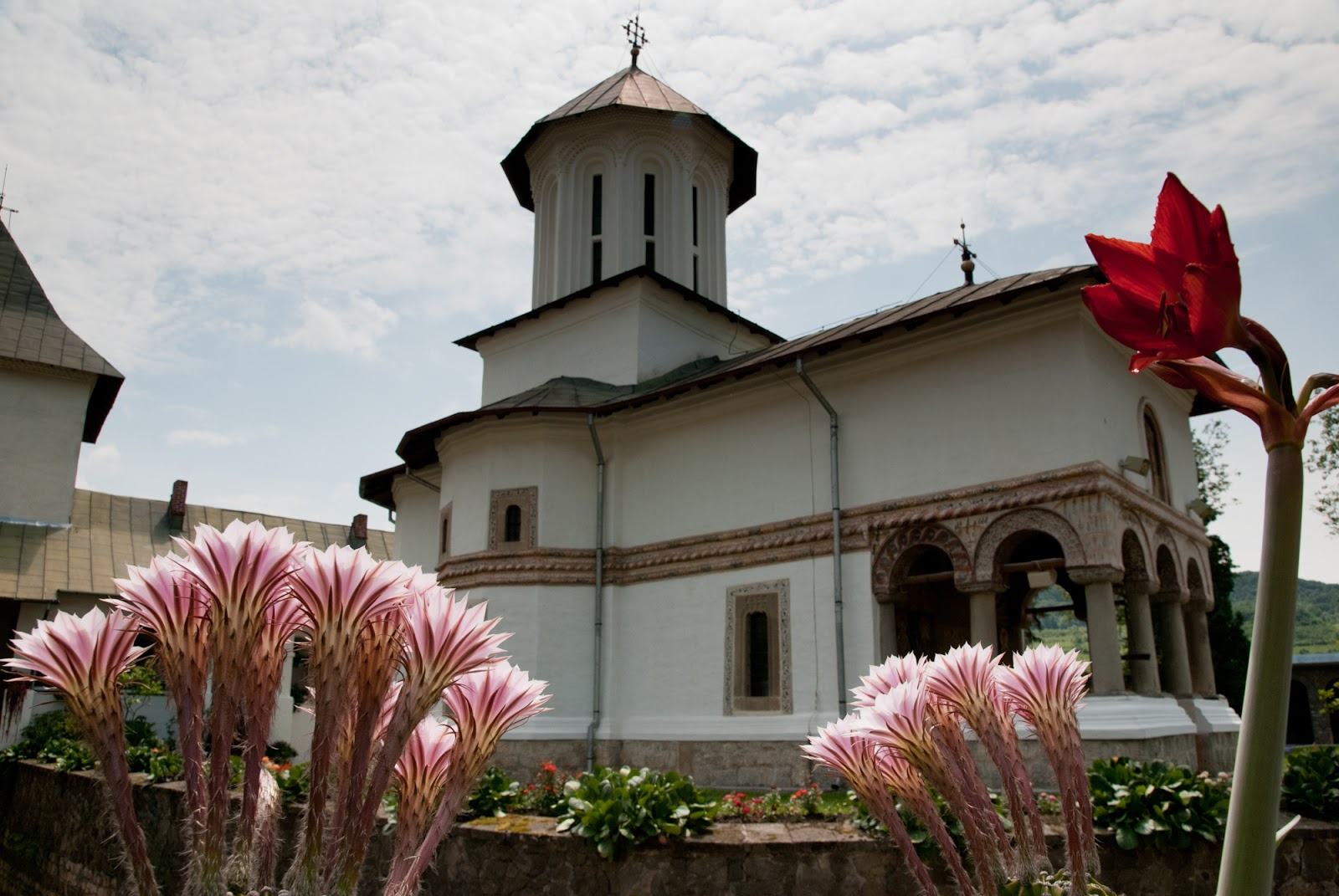 2011-06-1015manastireagovora