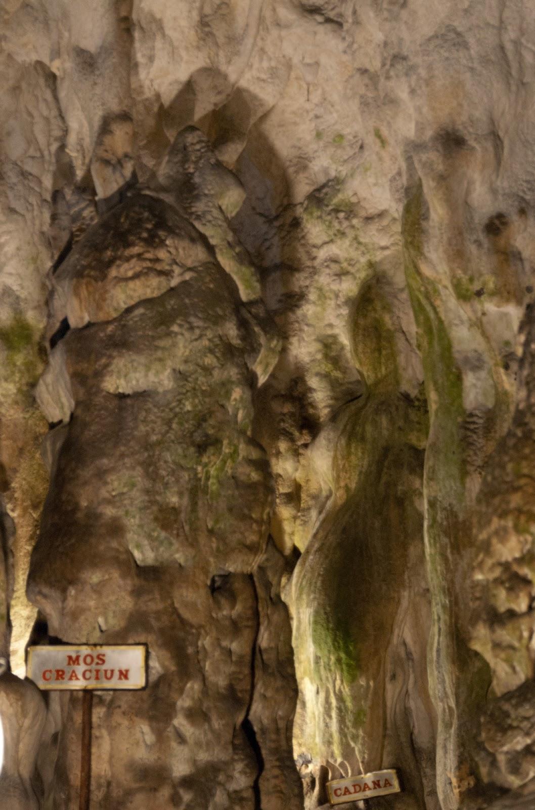 Și o mică bârfă: In Peștera Muierilor Moș Crăciun își dă întâlnire cu cadânele.
