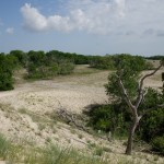 2012-05-18 116 Delta Dunarii