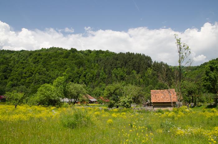 2014-06-08 87 Cascada Pișoaia