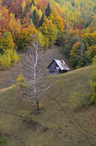 2012-10-26 10 Magura