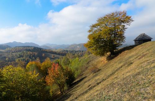 2012-10-26 21 Magura