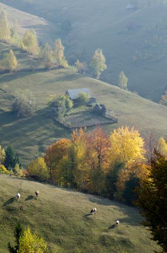 2012-10-26 69 Magura