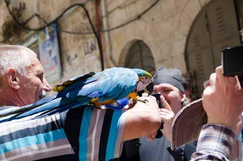 2013-05-27 76 Ierusalim - Via Crucis