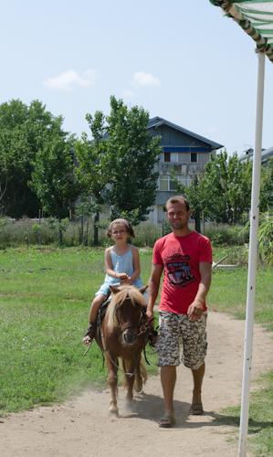 2013-07-14 90 Ferma animalelor