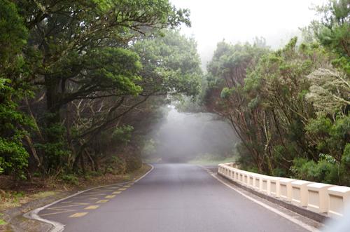 2013-09-14 52 Tenerife-Anaga