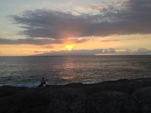 2013-09-16 135 Tenerife-Playa Paraiso