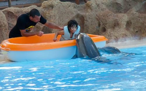 2013-09-14 90 Tenerife-Parcul Loro