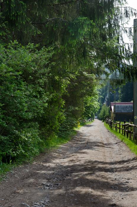 2014-06-08 106 Cascada Vârciorog