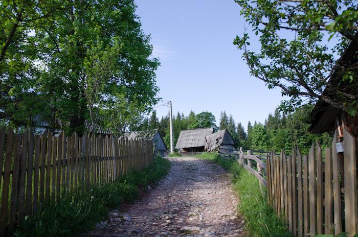 2014-06-08 29 Scărișoara