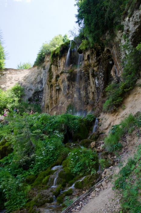 2014-06-08 93 Cascada Pișoaia