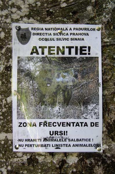 2014-08-31 157 Sinaia