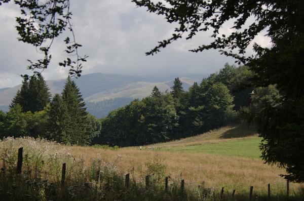 2014-08-31 245 Sinaia