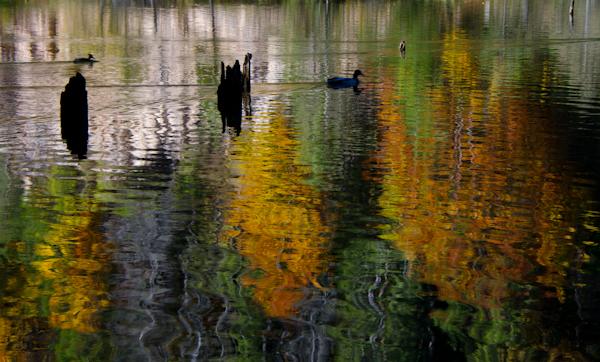 2014-10-10 358 Lacul Rosu
