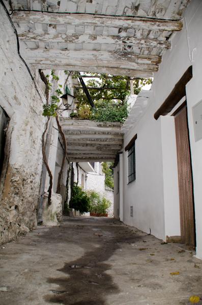 2015-10-11 66 Las Alpujarras - Pampaneira