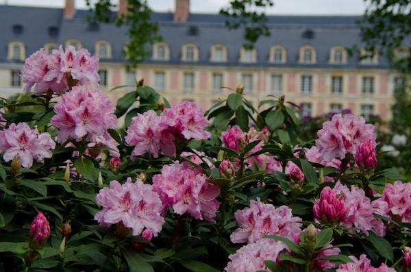2016-05-16 92 Fontainebleau