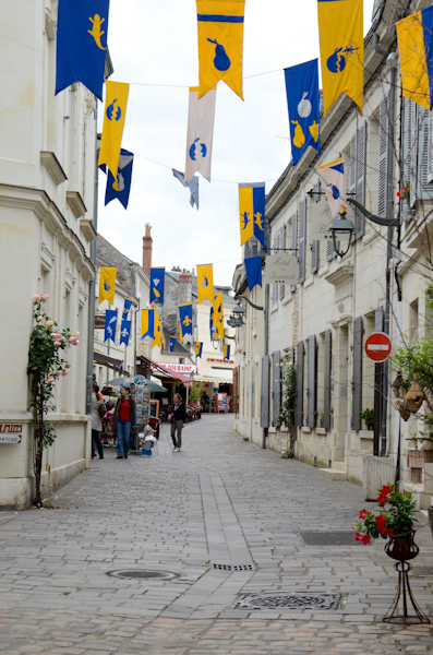 2016-06-19 476 Azay le Rideau