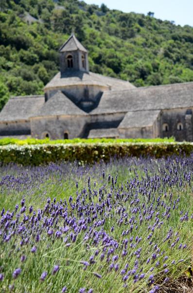2016-06-25-24-abbaye-notre-dame-de-senanque